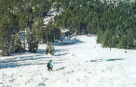 Williams Ski Area photo